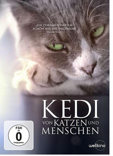 Kedi_1_1.jpg