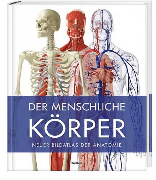 Der menschliche Körper | Sachbücher | Bücher | Augsburger CD- und ...